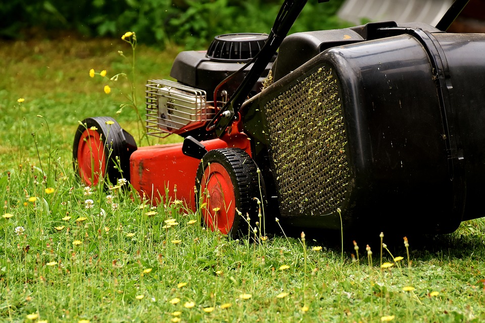 Devis tonte de pelouse  à Mougon